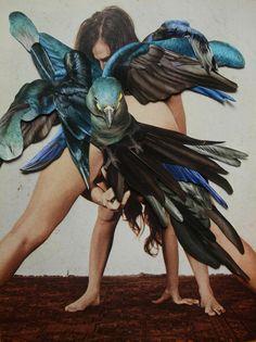 Collagen-Kunst: Dennis Busch zeigt ein Erinnerungen, Gegenwart und Zukunft - Art - bento