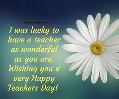 30 happy teachers day quotes and messages