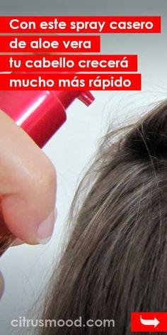 Hair Natural Aloe Vera 23 Ideas For 2019 Nutrition Tips, Health And Nutrition, Nutrition Chart, Health Diet, Best Beauty Tips, Beauty Hacks, Diy Beauty, Makeup Jobs, Aloe Vera Face Mask