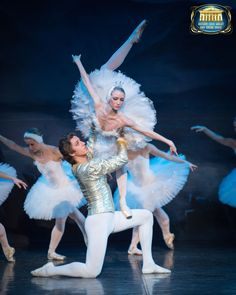 Swan Lake. With music performed by a large, live orchestra. Sunday 8 November. http://www.dorkinghalls.co.uk/index.cfm?articleid=10757&eventid=15621