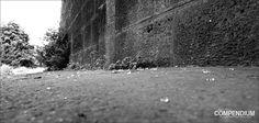 365 Tage Fotochallenge: Tag 181 Unter der Brücke