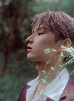 Woozi, Jeonghan, Wonwoo, Seventeen Instagram, Seventeen Junhui, Wen Junhui, Seventeen Album, Pop Photos, Diamond Life