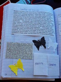 Interactive science notebooks camouflage