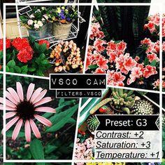 Mẹo hay sử dụng VSCO để chụp ảnh đẹp hơn phần 2