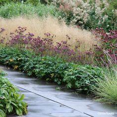 Tuin aan het Weeltje by Piet Oudolf / deschampsia, astrantia, echinacea