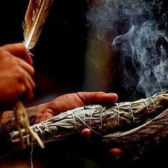 #Paranormal: Cleansing with #whitesage has long been a way of clearing the home of negative or stagnant #energies - Sweep your feather of smoke into the corners of each room with the intention of clearing out towards the door then out through your main door of your house - Your Home will then will feel lighter & clearer allowing good energies to enter, once the tired or not so good energies have been removed.
