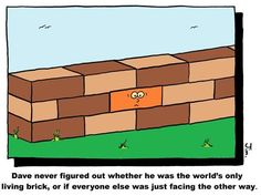 Just another brick #funny #lol #comedy #fun #humor