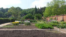 Walled Garden, Chartwell National Trust Walled Garden, National Trust, Days Out, Amazing Gardens, Vineyard, Outdoor, Ideas, Outdoors, Fenced Garden