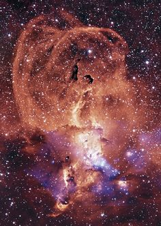 NGC 3576 Region of glowing gas in the Milky Way known as the Statue of Liberty Nebula. It is a bright emission nebula about 100 light-years across, located some 9000 light-years away in the Sagittarius arm of our Milky Way in the constellation Carina.