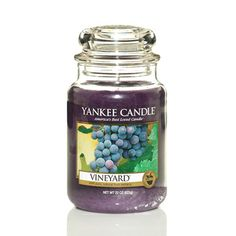 Vineyard® - What's New - Yankee Candle