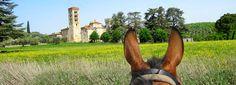 Ratsastusta Toscanan auringon alla