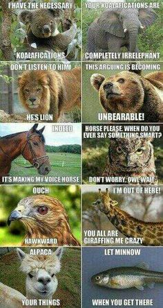 Found this rather hilarious :)