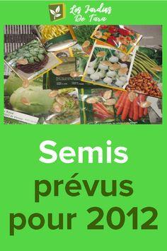 Semis prévus pour 2012 Chou Rave, Beef, Food, Gardens, Pickles, Red Kuri Squash, Seed Packets, Cape Gooseberry, Meals