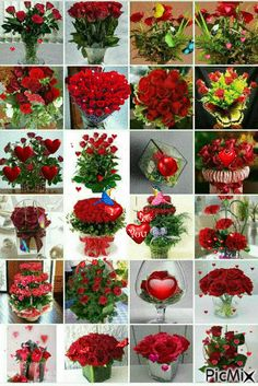 See the PicMix Flores belonging to Botaro on PicMix. Good Night Flowers, Good Morning Images Flowers, Good Morning Roses, Wallpaper Nature Flowers, Rose Flower Wallpaper, Beautiful Flowers Wallpapers, Arrangement Floral Rose, Rose Flower Arrangements, Beautiful Bouquet Of Flowers