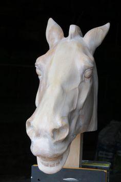 M.J.Y. horse of Selene frontal