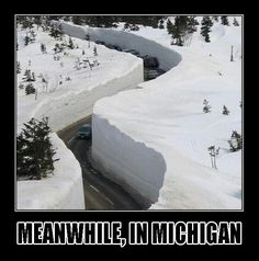 Everyday in Michigan. Just a normal winter day. Michigan is for Michiganders only. Michigan Travel, State Of Michigan, Detroit Michigan, Northern Michigan, Michigan Facts, Muskegon Michigan, Dubuque Iowa, Lansing Michigan, Lake Michigan