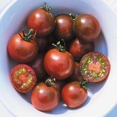 Pase Seeds - Brown Berry Tomato Seed - 25 Seeds Pase Seeds New, $3.29 (http://www.paseseeds.com/brown-berry-tomato-seed-25-seeds-pase-seeds-new/)