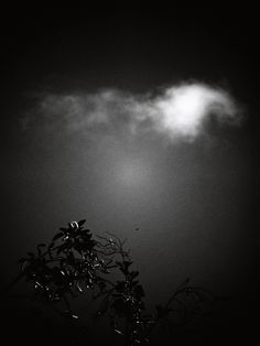 … la soledad …víctor m. alonso