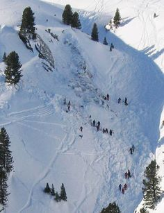 Übersicht einer Schneebrett-Lawine mit Bergrettern im Einsatz (Andreas Bartolot/Alpinpolizei)