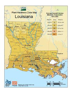 Do you know your plant hardiness zone? Most of us in southwest Louisiana are in zone 9a. Knowing your zone can help you make better choices for your landscape and garden. USDA Plant Hardiness Zone Map
