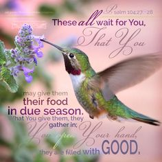 PSALM Lord, all living things depend on you. You give them food at the right time. You give it, and they eat it. They are filled with good food from your open hands. Scripture Pictures, Scripture Cards, Bible Verses Quotes, Bible Scriptures, Biblical Quotes, Wisdom Quotes, Psalm 104, Christian Messages, Christian Quotes