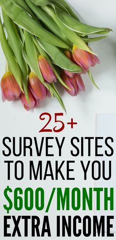 Looking for other sources of income? This post describes the survey sites that will help you earn extra money. survey sites l survey money l extra money l side hustle l work from home l money management l pay off debt l side hustle l money tips l passive income l free money l extra income l opinion l budgeting