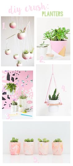 DIY Crush: Planters W A Touch of Pink