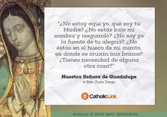 Galería: Mensajes de la Virgen María al mundo