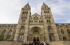 Natural History Museum is one of cultural attractions, three large museums on Exhibition Road, South Kensington, London.Hundreds of exciting, interactive exhibits in one of London's most beautiful landmark buildings.