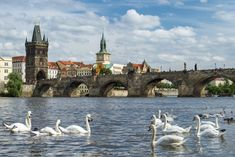 Don't fret, there's more history in Prague than you can handle in a trip. Here's the ultimate itinerary for a trip to Prague. Visit Prague, Prague Travel, Romantic Destinations, European Vacation, Beautiful Places In The World, Central Europe, Eastern Europe, Dream Vacations, Travel Inspiration