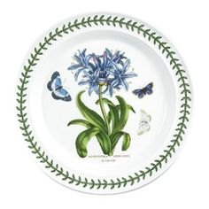 Portmeirion 'Botanic Garden' Dinner Plate in African Lily (Agapanthus africanus) Portmeirion China, Portmeirion Pottery, Dinner Plate Sets, Dinner Plates, African Lily, William Ellis, Blue Dishes, Laurel Leaves, Antique China