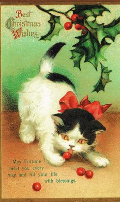 Vintage Cat Christmas Postcard Illustrated by Ellen Clapsaddle * 1500 free paper dolls Christmas gifts artist Arielle Gabriels The International Paper Doll Society also free paper dolls The China Adventures of Arielle Gabriel * Cat Christmas Cards, Christmas Card Pictures, Christmas Kitten, Vintage Christmas Images, Christmas Graphics, Noel Christmas, Christmas Animals, Victorian Christmas, Retro Christmas