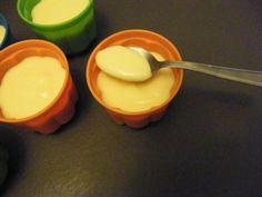 Crème vanille au companion moulinex