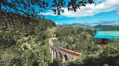Colombo: Guia de Viagens para Visitar Colombo   Alma de Viajante Sri Lanka, Travelling, Travel Guide, The Journey, Wayfarer, Viajes, Travel