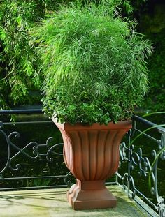 Decorative Urns For Plants Magnificent Bell Urn  Urn Planters  Pinterest  Urn Inspiration