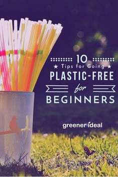 """Every environmentally-aware citizen joins the tirade against """"plastic"""" sooner or later. Even if you do not know much about the details, there is no question that plastic is a gigantic problem around the globe, without exception. So, here are 10 ways you c Plastic Free July, No Plastic, Plastic Waste, Plastic Alternatives, Eco Friendly Cleaning Products, Green Living Tips, Reduce Reuse Recycle, Living At Home, Green Life"""