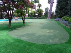 Putting green in Verona, Italy Verona Italy, Artificial Turf, Grass, Golf Courses, Astroturf, Grasses, Herb