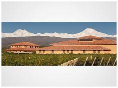 Finca Decero - Winery Mendoza, Argentina