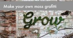 Make your own moss grafitti