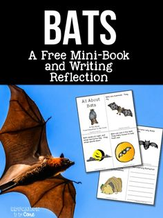 Education to the Core: Bats: A FREE Mini-Book and Writing Reflection!