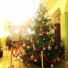 Теперь и в правду чувствуется приближение нового года! Какая же красивая наша новогодняя ёлка от @axenoff ! Желаем все праздничного настроения! #новыйгод #праздникновыйгод #петраксенов #axenoffjewellry #happynewyear #newyear2016 #astoriahotel