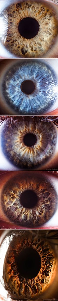 Extreme close-ups of the human eye, photographed by Suren Manvelyan.
