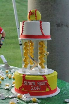 Softball cake for Senior Night 2014 by Cake Cakery