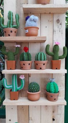 The kind of cacti I've only seen in westerns Crochet Gifts, Cute Crochet, Crochet Dolls, Crochet Yarn, Crochet Cactus, Crochet Flowers, Knitting Projects, Crochet Projects, Yarn Crafts