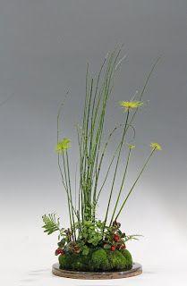 a hyemale Equisetum, Cyperus haspan, Gaultheria procumben, Adiantum capillus veneris and Polypodium vulgare.