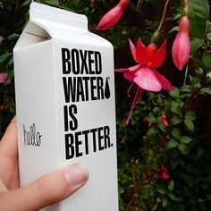 {boxed water is better} good morning! Join in on the movement to save the environment and drink @boxedwater.