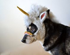 A Unicorn Mask for puppies. All my dreams are about to come true!
