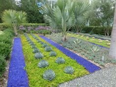 modern LA garden