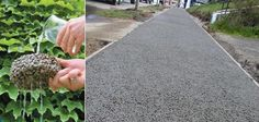 Pervious Pavement — Architecture-Design -- Better Living Through Design