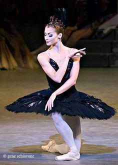 Ekaterina Kondaurova as the Black Swan